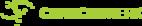 Small_chancenwerk_logo