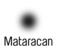 Fits in 160x50 mataracan logo schwarz  1
